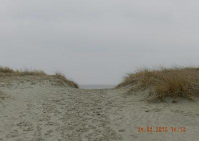 Blick durch die Dünen zum Meer